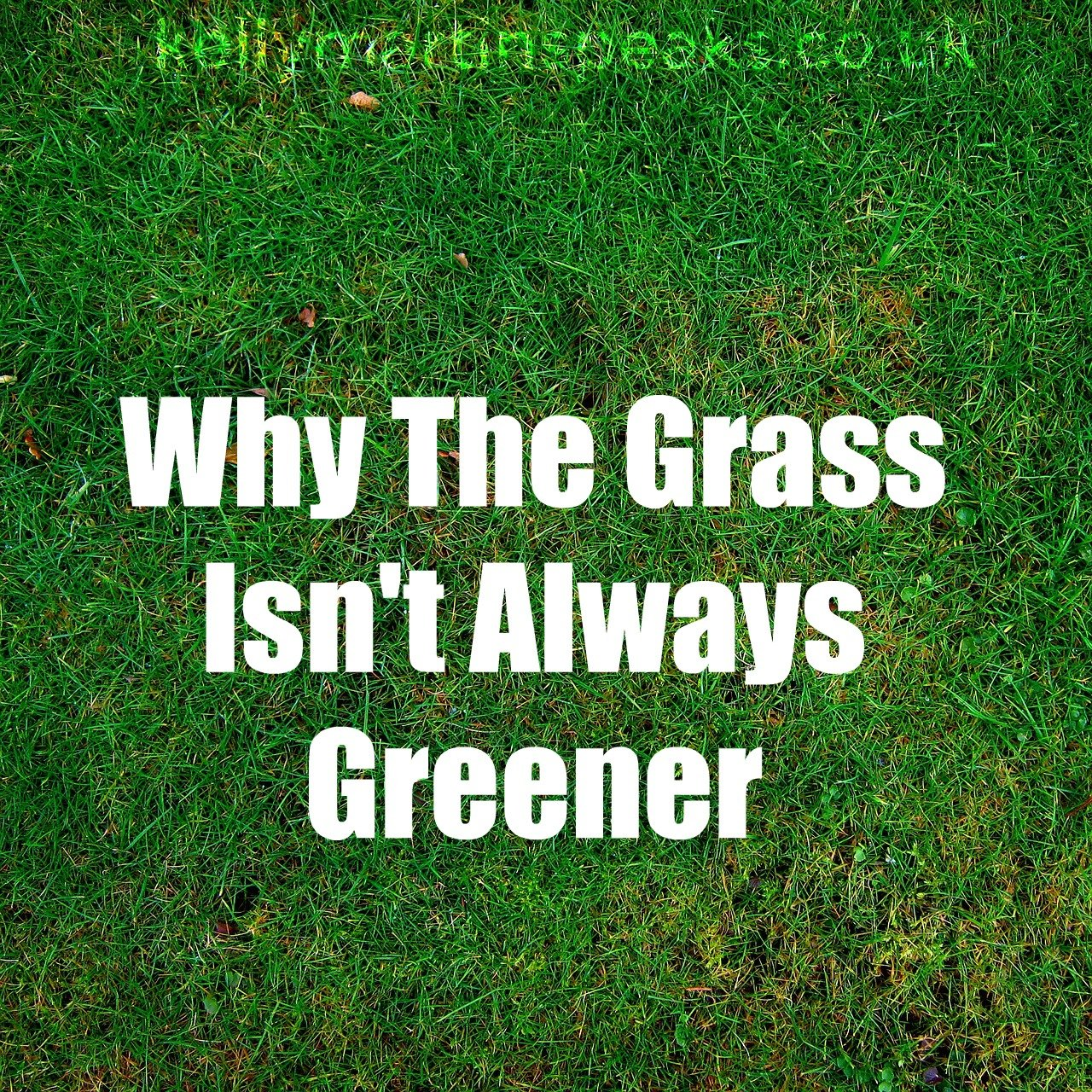 grass isnt always greener