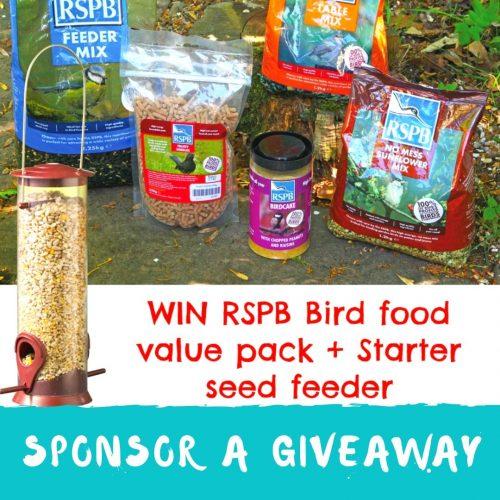 sponsor blog giveaway