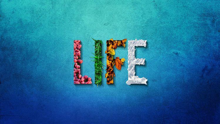 seasons life