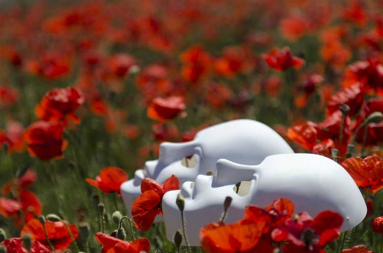masks poppies