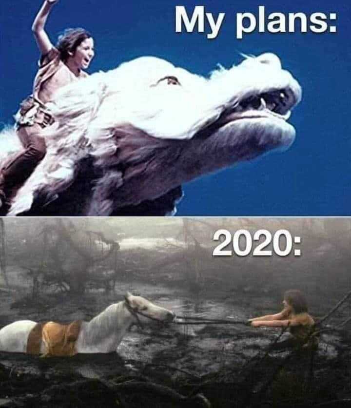 2020 meme NEVER ENDING STORY